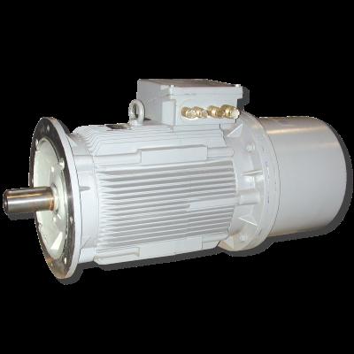 Industry Motor