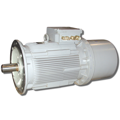 Offshore Motor & Propulsion Special motor IP56 or IP68 with brake or encoder AC and DC